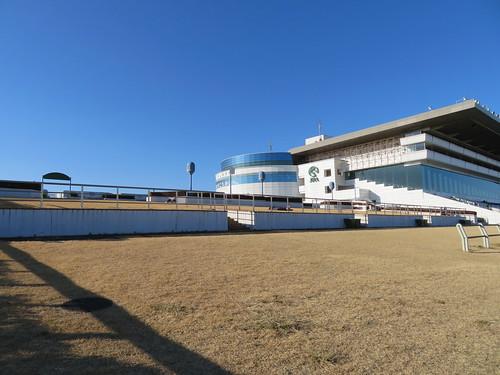 中山競馬場の芝スタンドの位置