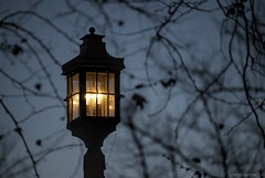 Lamp posts and lights