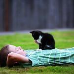 Boy and a Kitten