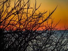 Contrast - Lake Erie Bluffs