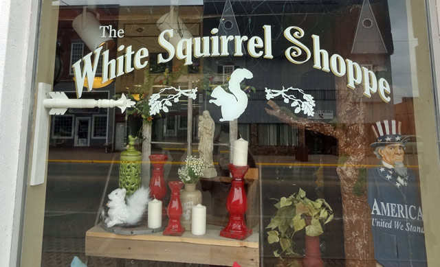white-squirrel-store