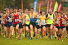 2015 Australian Cross Country Championships