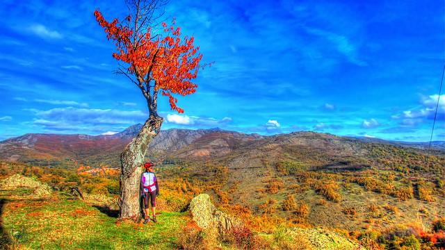 2015_10_25_Montejo de la Sierra_Puerto del Cardoso_La Hiruela-041
