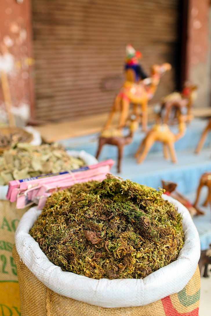 Shopping for Spices at the Marrakesh Market (What to Do in Morocco).
