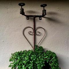 Em tempos de torneiras vazias com falta d'Água, uma boa sacada na utilidade de torneiras para seu jardim #cabodesantoagostinho #destilaria