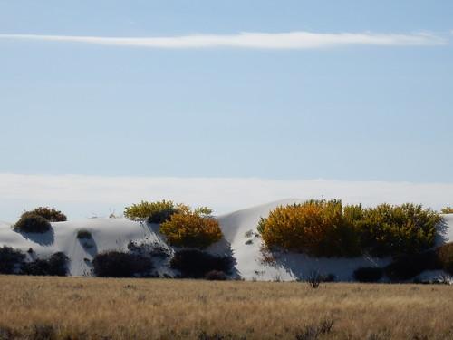 White Sands National Monument - 10