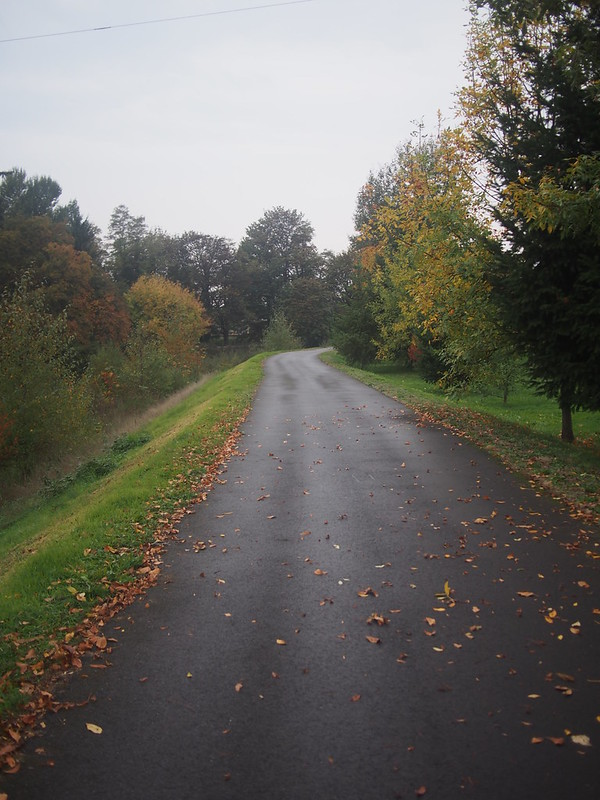 Green River Trail
