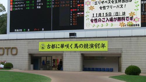 20151107_京都競馬場