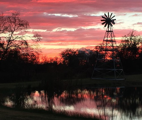sunset windmill square pond texas squareformat iphoneography instagramapp uploaded:by=instagram