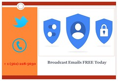 Best Email Marketing Software which One is Right for Your Business ? STEdb