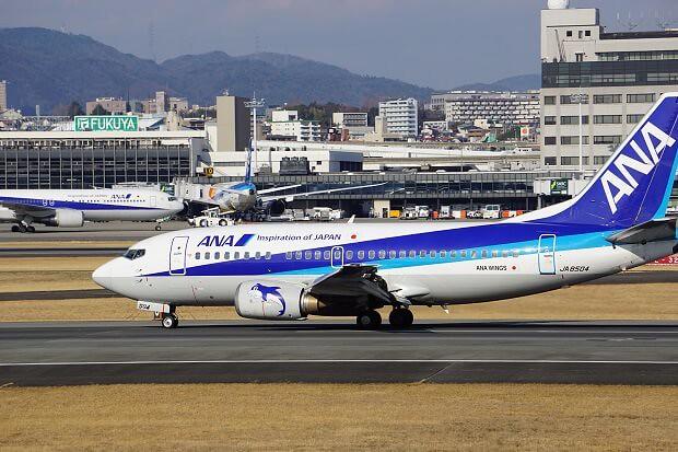 170309 ANA B737-500着陸