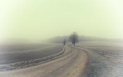 route de Bresse en janvier