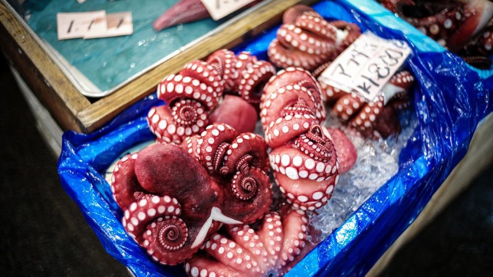 風情文化/探访世界上最具传奇色彩的东京築地魚市 Tsukiji Fish Market7