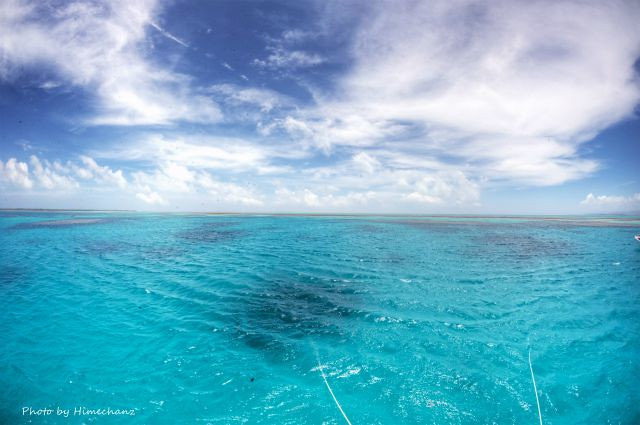 浜島東エリアに行くと風が穏やかになりました♪