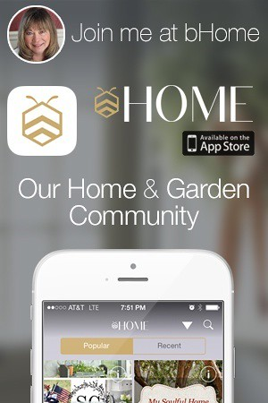 bHome  mobile app - Housepitality Designs