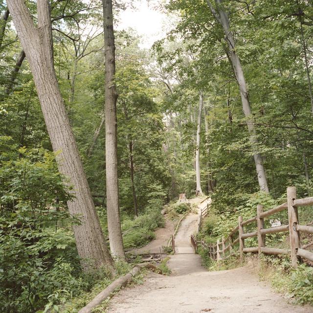 Glenn Stewart Trail III