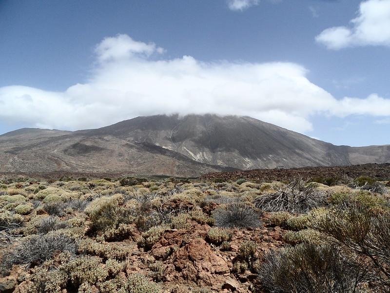 PN. Cañadas del Teide 20866180425_1643f67cb6_c