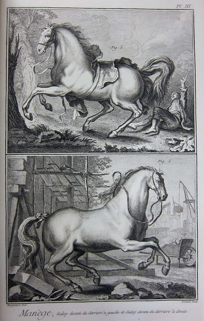 diderot horses