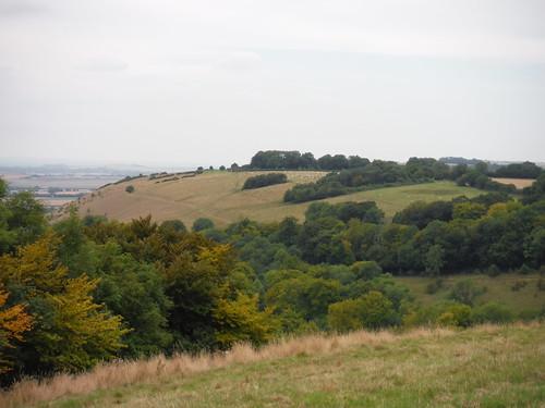 Along Huish Hill, from Oare Hill