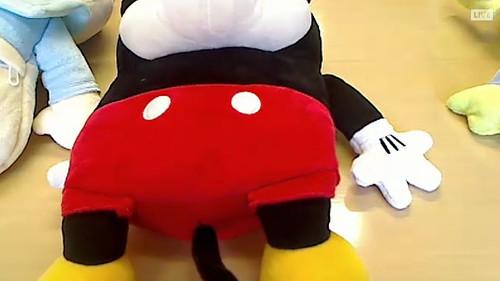 ディズニーキャラクター湯たんぽ