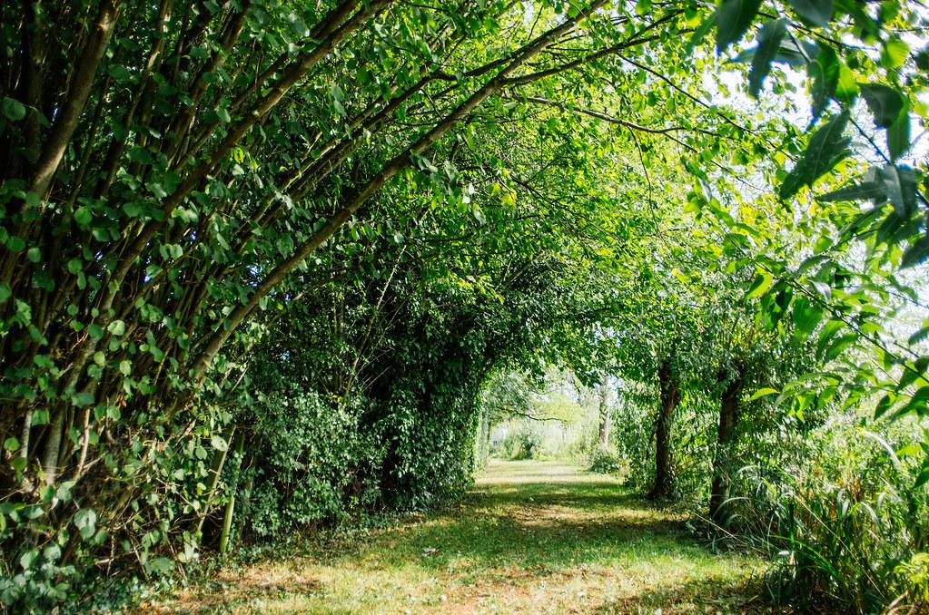 Balade gastronomique dans l'Yonne - Sur le chemin du camping