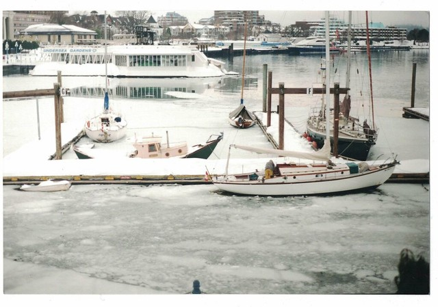 Frozen Inner Harbour. Photo Allison Mundschutz