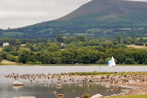 Walking around Llangorse Lake (Llyn Syfaddan)