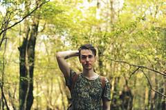 森 (Forest)