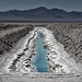 salt evaporation. bristol dry lake, ca. 2014. by eyetwist