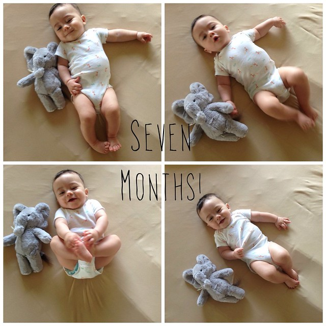Seven Months!