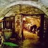 #navelli #vino #cantina #abruzzo #italy