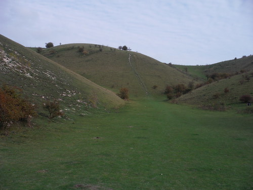 View back up main valley, Barton Hills