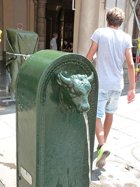 fontaine taureau
