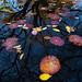 Central Park Conservatory Garden by joe holmes