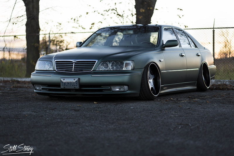 Blain Angus's Y33 Q45 by Gray Schilling