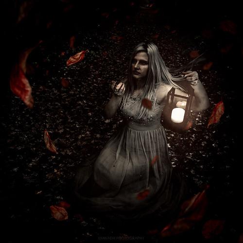 In the dark // 10 11 15