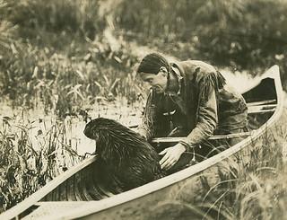 Beaver in a canoe with Grey Owl / Grey Owl dans son canot avec un castor