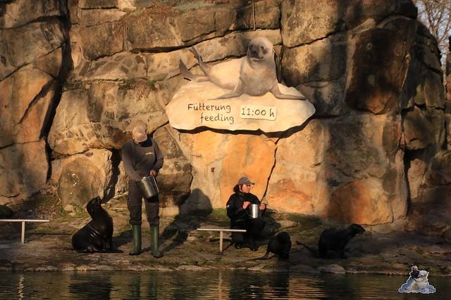 Zoo Berlin 06.12.2015    059