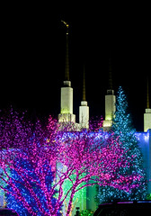 2016 National LDS Temple Christmas Lighting _17