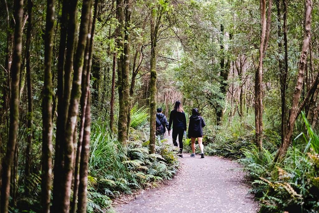 Tasmania 2016-88