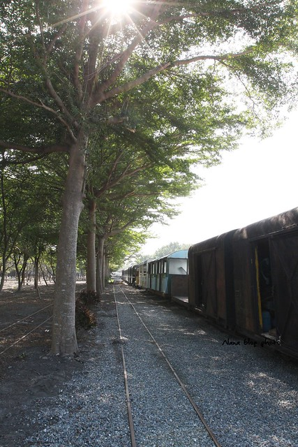 彰化溪湖糖廠-溪湖車站 (37)