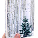 Birch Forest and Polar Bear Journal handmade by book artist Ruth Bleakley - 1