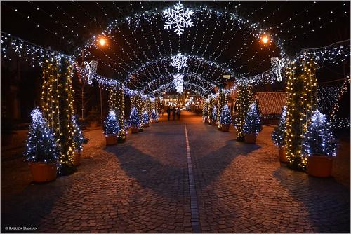 365daysfrom2017 winter january city night street