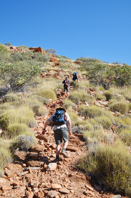 Ascending the Chewings Range - Larapinta Trail