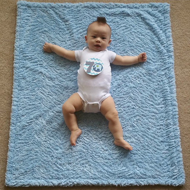 Parker's Seven Month Photo | shirley shirley bo birley Blog