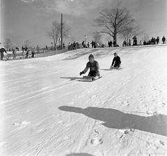 Sur le Mont-Royal. - 3 mars 1967. VM94-A0486-005. Archives de la Ville de Montréal.