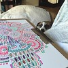 My muse. #doodles #dogsofinstagram #fannypup