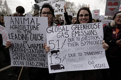 Animal agriculture is the leading cause of global warming.