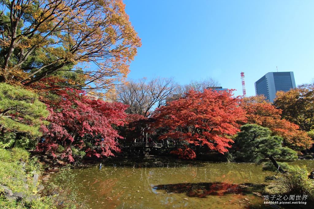 東京賞楓-日比谷公園27