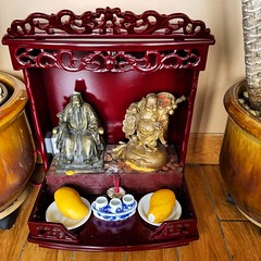 There's a sticker on the mango in the altar filled with pennies in the foyer of the pho place at the strip mall down the street 🍟#pho #mango #altar #buddha #darthvader #vietnamese #pennies #colorado #goodluck